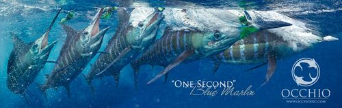 Marc Montocchio Blue Marlin - limited editions